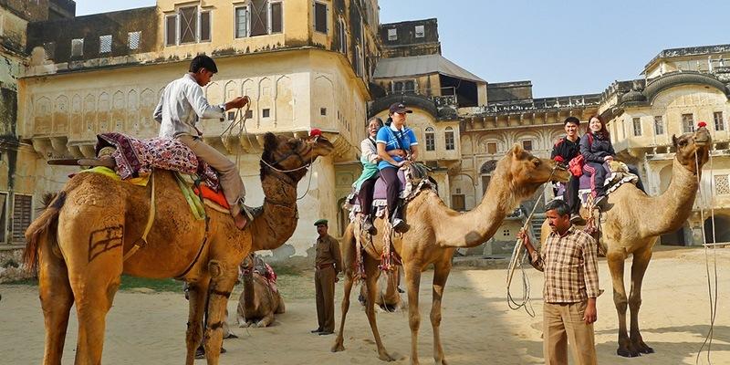 mandawa rajasthan tourism