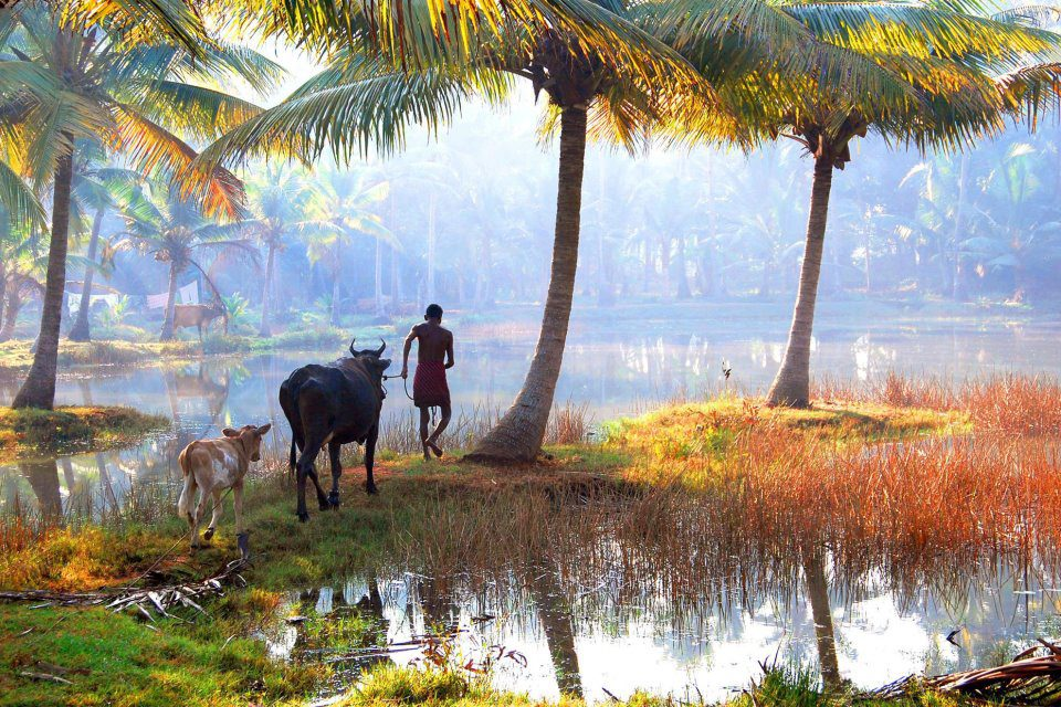 Primary Tourism Products of Kerala