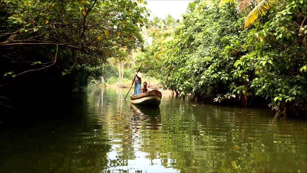 rivers and their tributaries in Kerala