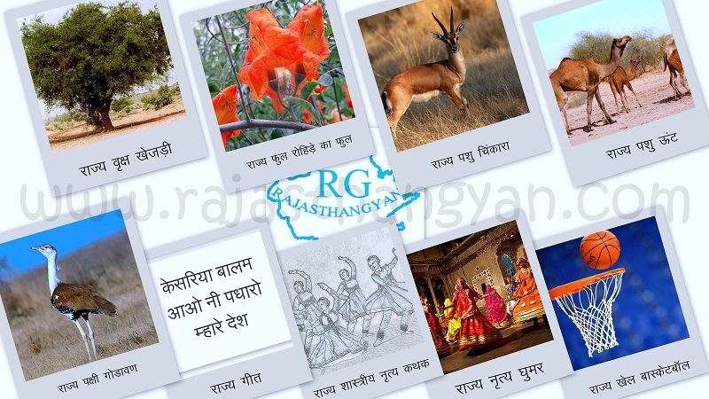 राजस्थान के प्रतीक चिन्ह