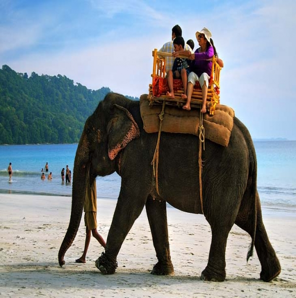Elephant beach in Havelock