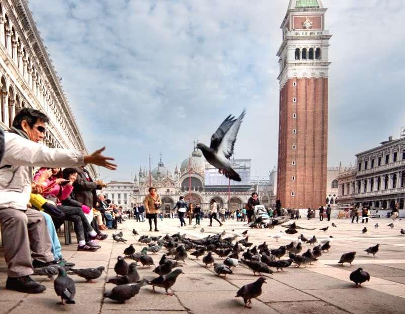 Travel Destination in Milan