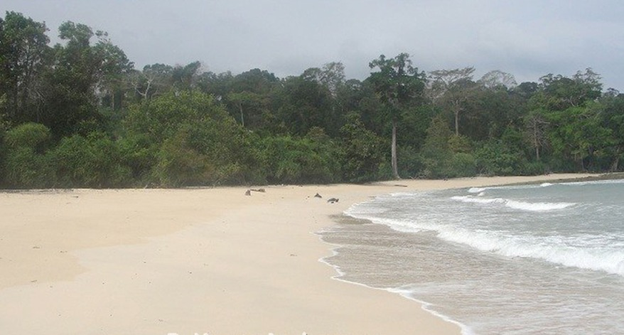 Raman Bageecha Beach, Rangat