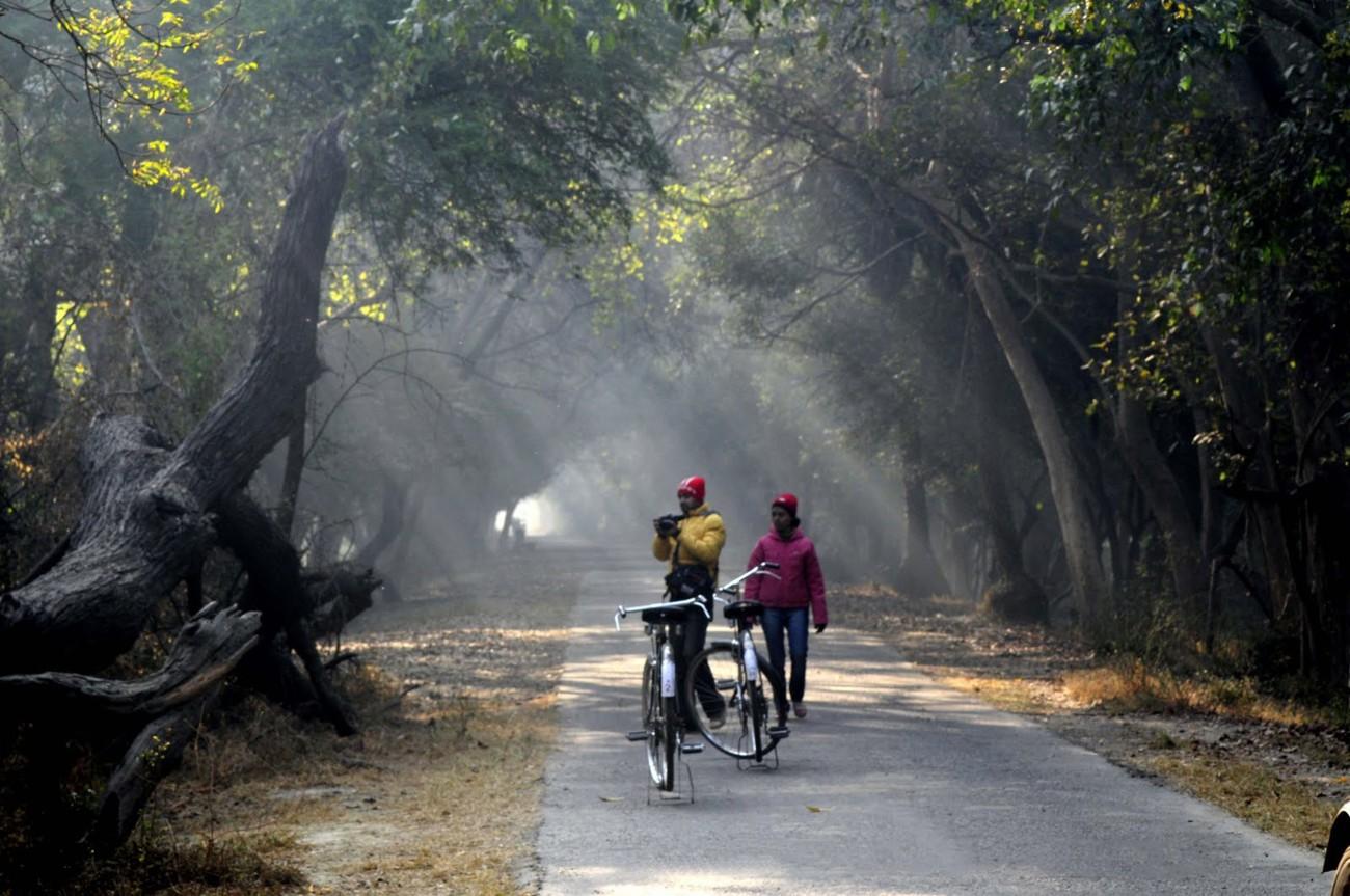 Dholpur In Rajasthan